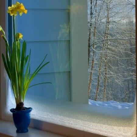 Kälteschutzfolie Fenster innen - selbstklebend